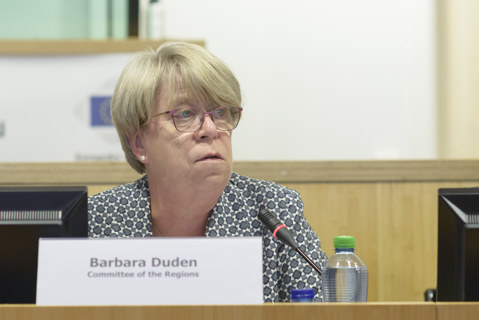 PUTTING EU LAW INTO PRACTICE CONFERENCE - Barbara Duden, Chair, Commission for Citizenship, Governance, Institutional and External Affairs, Committee of the Regions