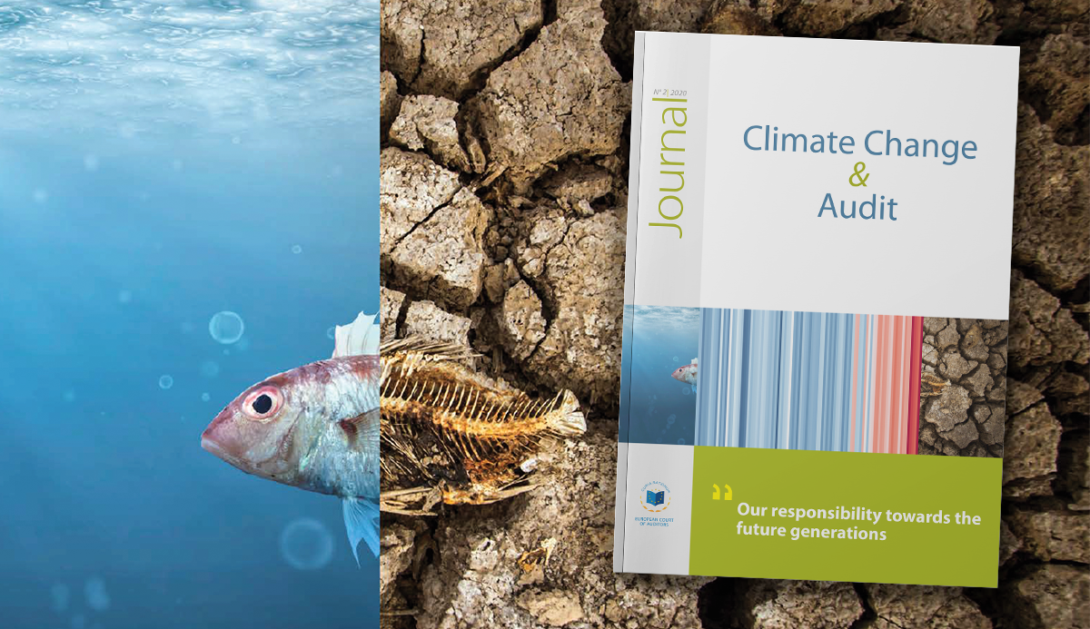 ECA Journal 02/2020: Climate Change and Audit
