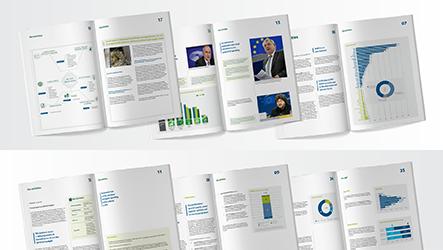 Den Europæiske Revisionsrets aktivitetsrapport for 2017