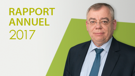 Rapport annuel 2017