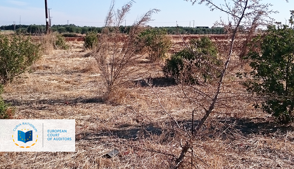 Combating desertification in the EU: steps so far lack coherence
